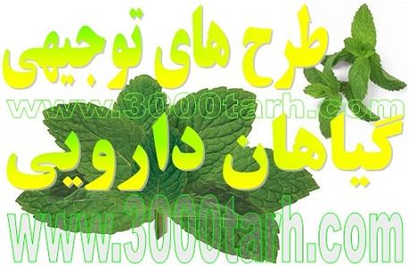 پکیج کشت و صنعت تولید و بسته بندی انواع گیاهان دارویی،داروهای گیاهی،گل و گیاه زینتی و...