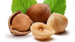 357-Hazelnuts.jpg (240×135)
