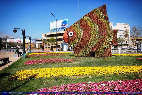 اِلمان های گل و گلکاری ویژه در سطح کلانشهر مشهد