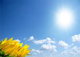 پروژه روبات تعقیب کننده نور خورشید با پردازش تصویرMatlab,AVR