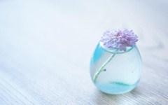 435-flower_vase_glass_table.jpg (240×150)