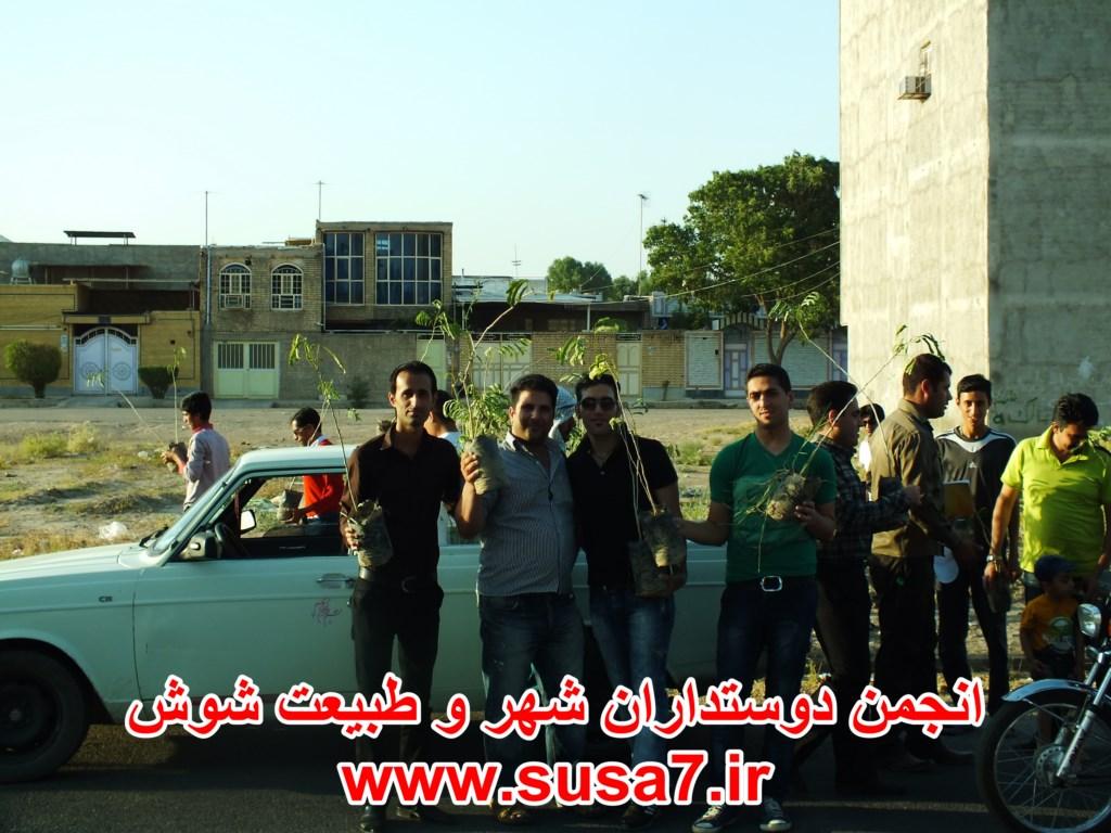 عکس درخت کاری بلوار امام حسن - زیبا شهر 1393.03.27