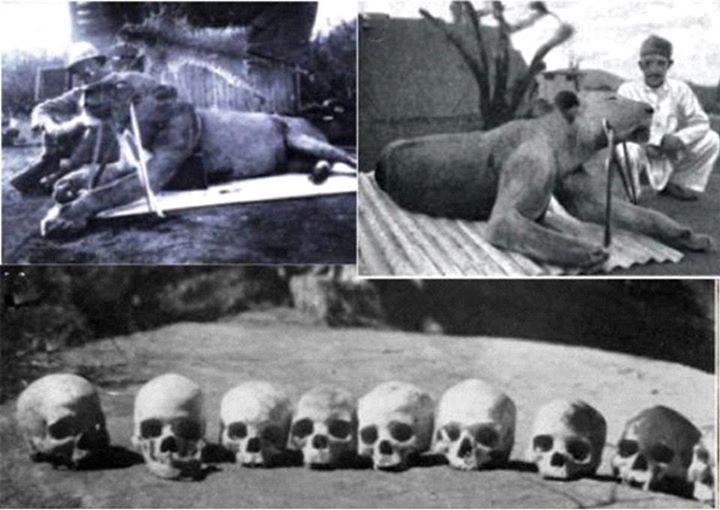 """جسد """"روح"""" و تاریکی"""" در مقابل جمجمه قربانیان آنها، كنيا"""