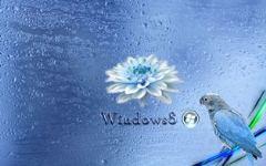 858-Windows 8.jpg (240×150)