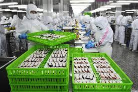 طرح توجیهی و امکانسنجی فنی و اقتصادی فرآوری و بسته بندی ماهی قزل آلا