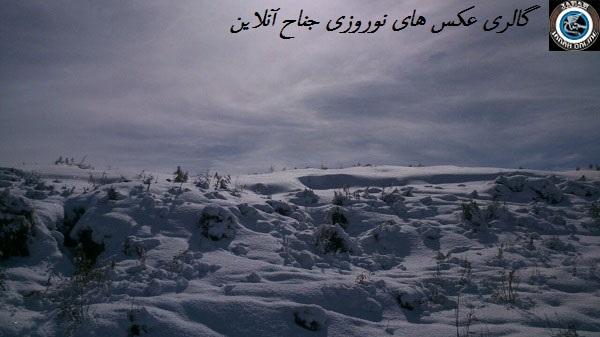 عکس های ارسالی،ویژه ی مسابقه ی عکاسی نوروزی جناح آنلاین(سری۵)